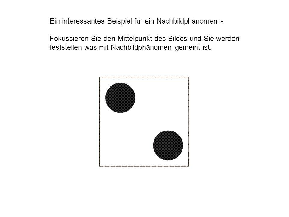 Ein interessantes Beispiel für ein Nachbildphänomen - Fokussieren Sie den Mittelpunkt des Bildes und Sie werden feststellen was mit Nachbildphänomen g