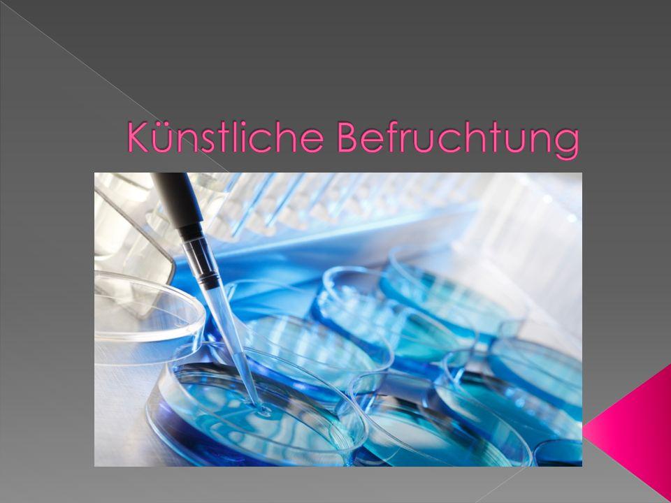 Beratungsgespräche und ärzliche Untersuchungen Gründe für Kinderlosigkeit In-vitro- Fertilisation(IVF) Intrazytoplasmatische Stermieninjektion(ICSI)