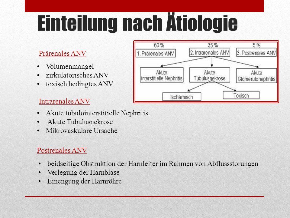 Einteilung nach Ätiologie Prärenales ANV Intrarenales ANV Postrenales ANV Volumenmangel zirkulatorisches ANV toxisch bedingtes ANV Akute tubulointerst