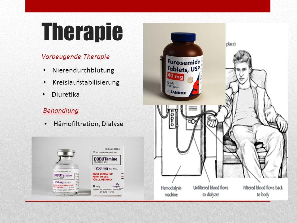 Therapie Vorbeugende Therapie Nierendurchblutung Kreislaufstabilisierung Diuretika Behandlung Hämofiltration, Dialyse