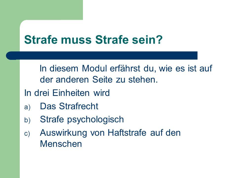 Außerdem besuchst du in diesem Modul eine Strafgefangenanstalt in Wien.