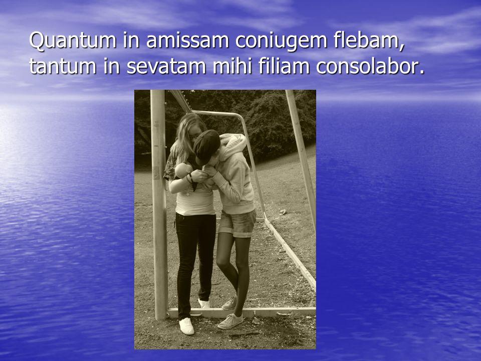 Quantum in amissam coniugem flebam, tantum in sevatam mihi filiam consolabor.