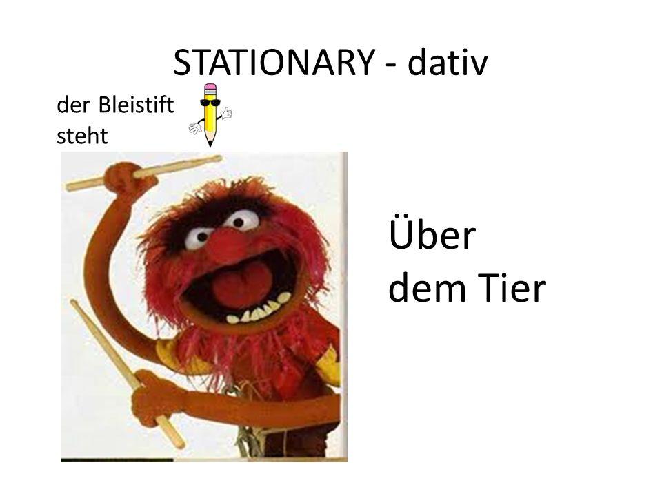 STATIONARY - dativ Über dem Tier der Bleistift steht