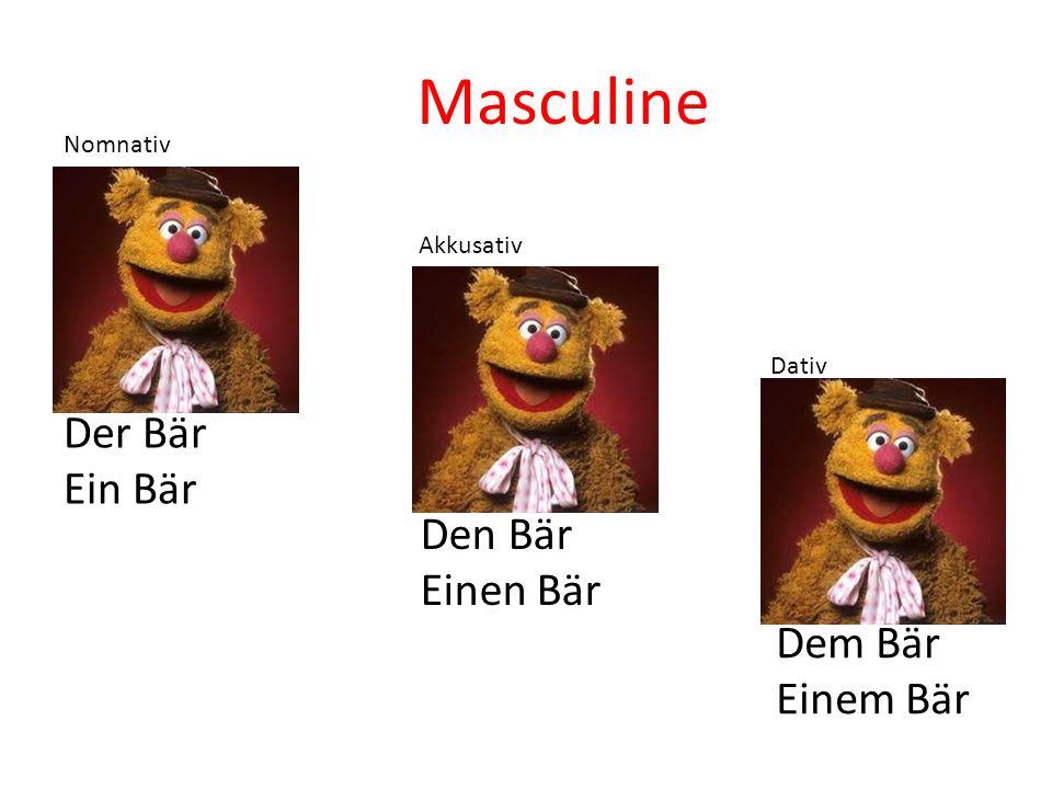 Der Bär Ein Bär Den Bär Einen Bär Dem Bär Einem Bär Nomnativ Akkusativ Dativ Masculine