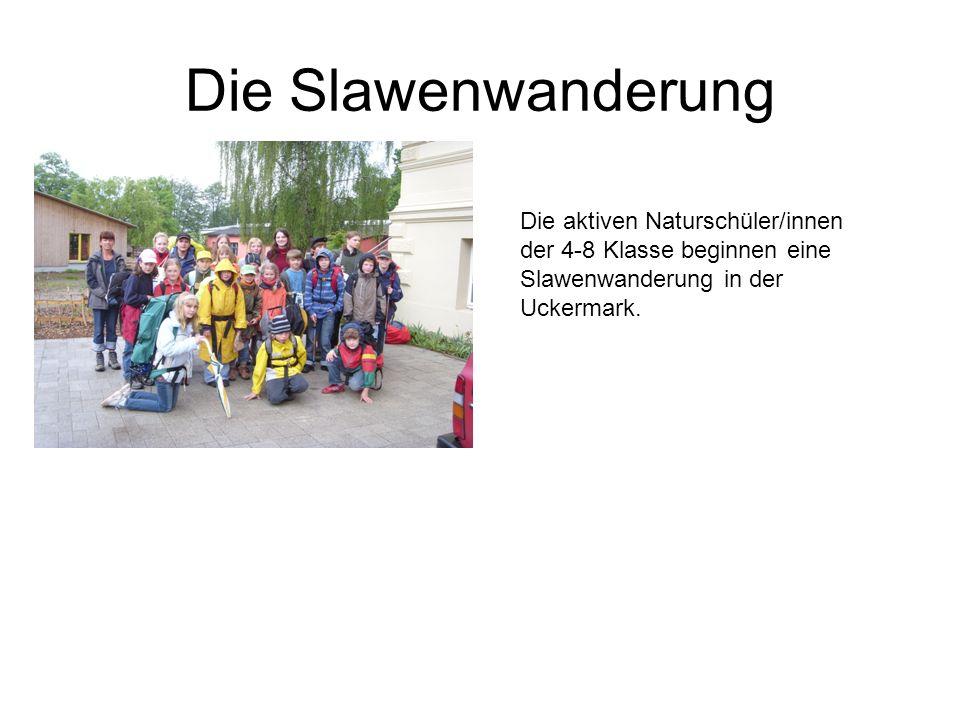 Die Slawenwanderung Die aktiven Naturschüler/innen der 4-8 Klasse beginnen eine Slawenwanderung in der Uckermark.