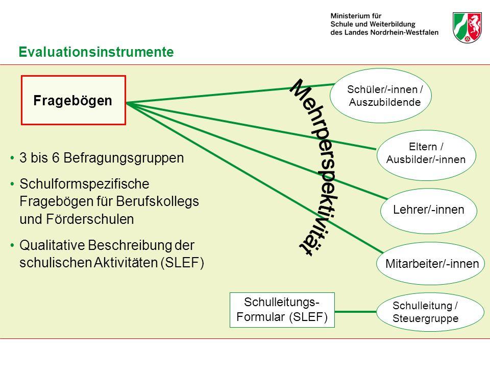Schulleitungs- Formular (SLEF) Schüler/-innen / Auszubildende Fragebögen Eltern / Ausbilder/-innen Lehrer/-innen Mitarbeiter/-innen 3 bis 6 Befragungs