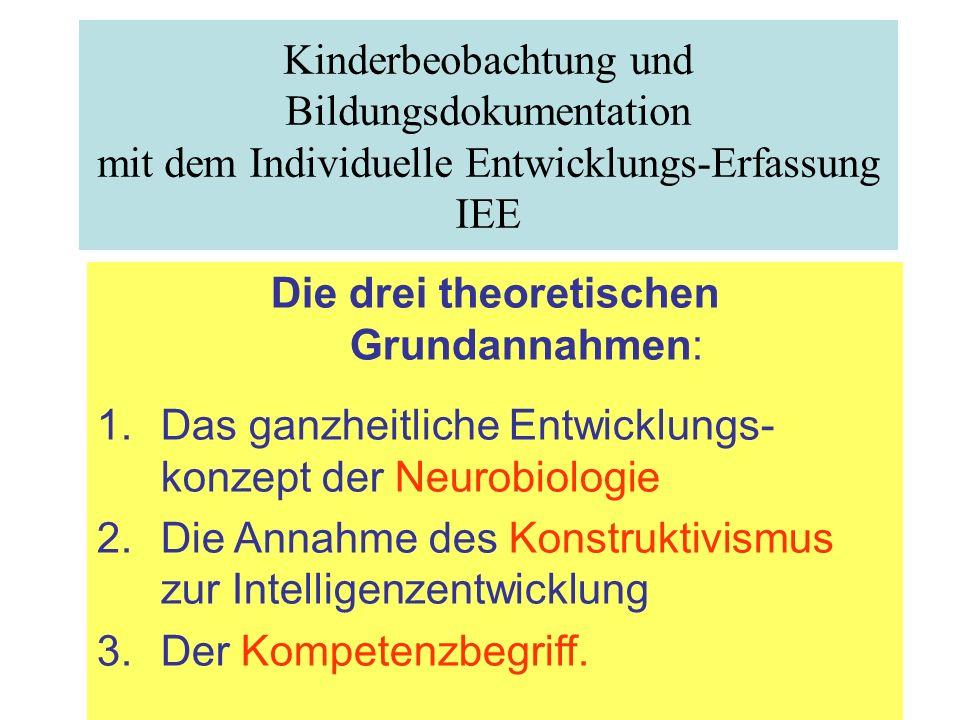 Probleme der Beobachtung Kinderbeobachtung und Bildungsdokumentation mit dem Individuelle Entwicklungs-Erfassung IEE Die drei theoretischen Grundannah