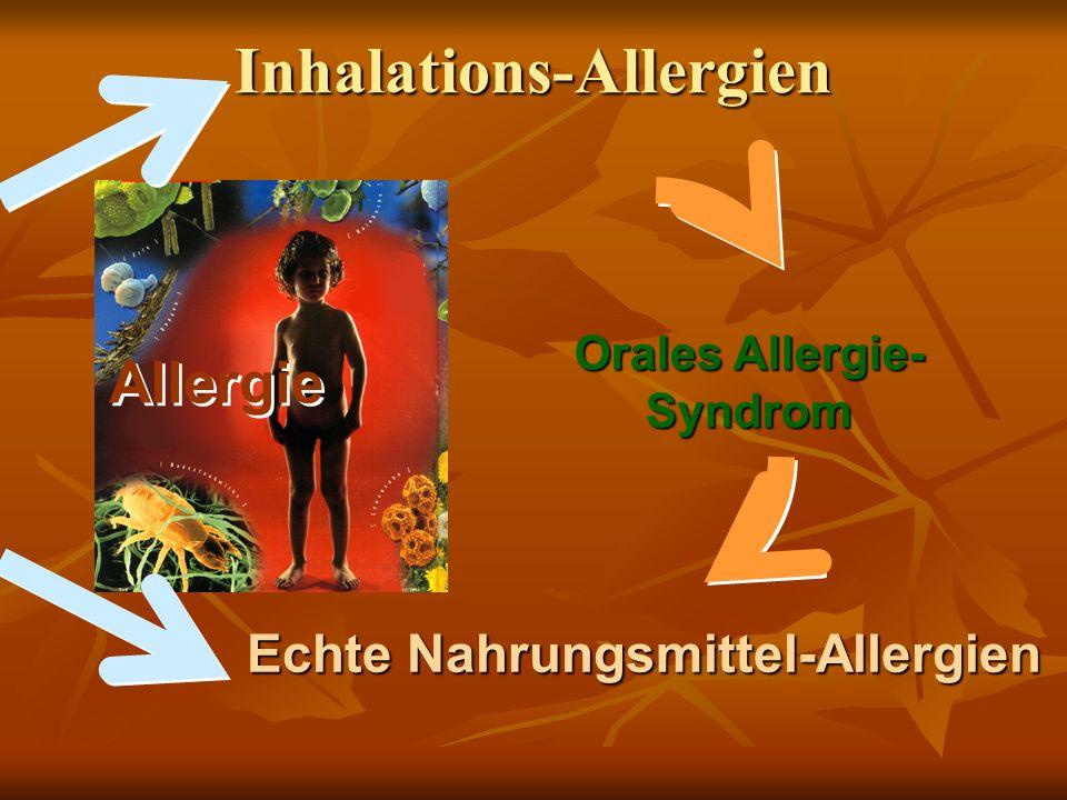 Allergie Orales Allergie- Syndrom Echte Nahrungsmittel-Allergien Echte Nahrungsmittel-Allergien Inhalations-Allergien