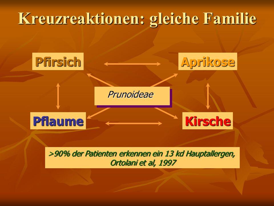 PfirsichAprikosePflaumeKirsche Prunoideae >90% der Patienten erkennen ein 13 kd Hauptallergen, Ortolani et al, 1997 Kreuzreaktionen: gleiche Familie