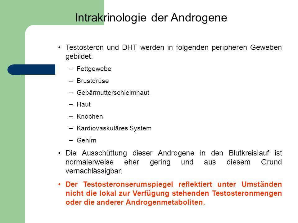Testosteron und DHT werden in folgenden peripheren Geweben gebildet: –Fettgewebe –Brustdrüse –Gebärmutterschleimhaut –Haut –Knochen –Kardiovaskuläres