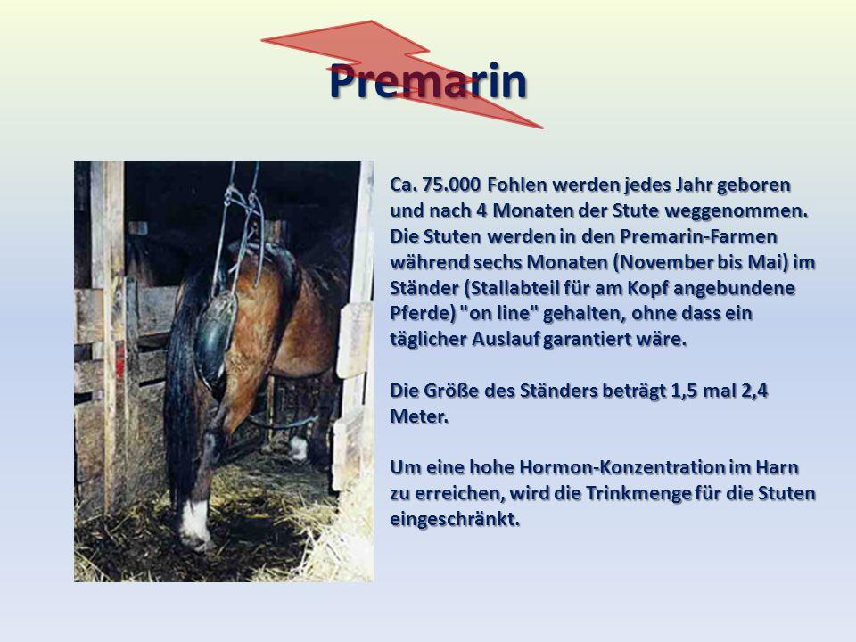 Premarin Ca. 75.000 Fohlen werden jedes Jahr geboren und nach 4 Monaten der Stute weggenommen. Die Stuten werden in den Premarin-Farmen während sechs
