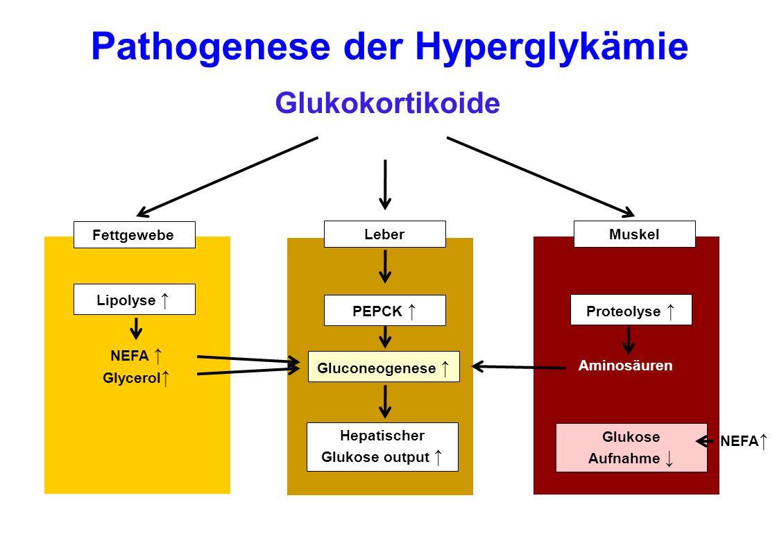 Diabetische Stoffwechsellage erstmals unter einer Steroidtherapie aufgetreten Glukokortikoid-induzierter Diabetes