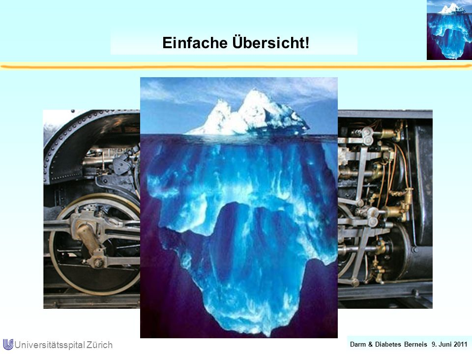 Darm & Diabetes Berneis 9. Juni 2011 Universitätsspital Zürich Einfache Übersicht!