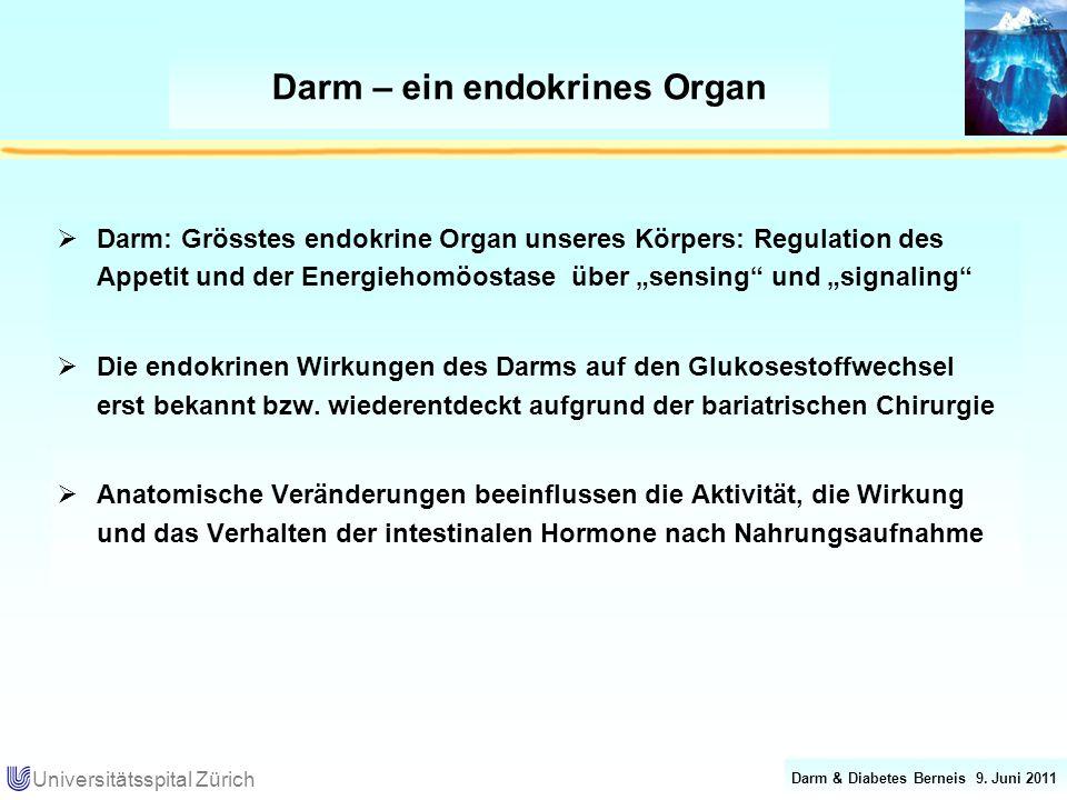 Darm & Diabetes Berneis 9. Juni 2011 Universitätsspital Zürich Darm – ein endokrines Organ Darm: Grösstes endokrine Organ unseres Körpers: Regulation