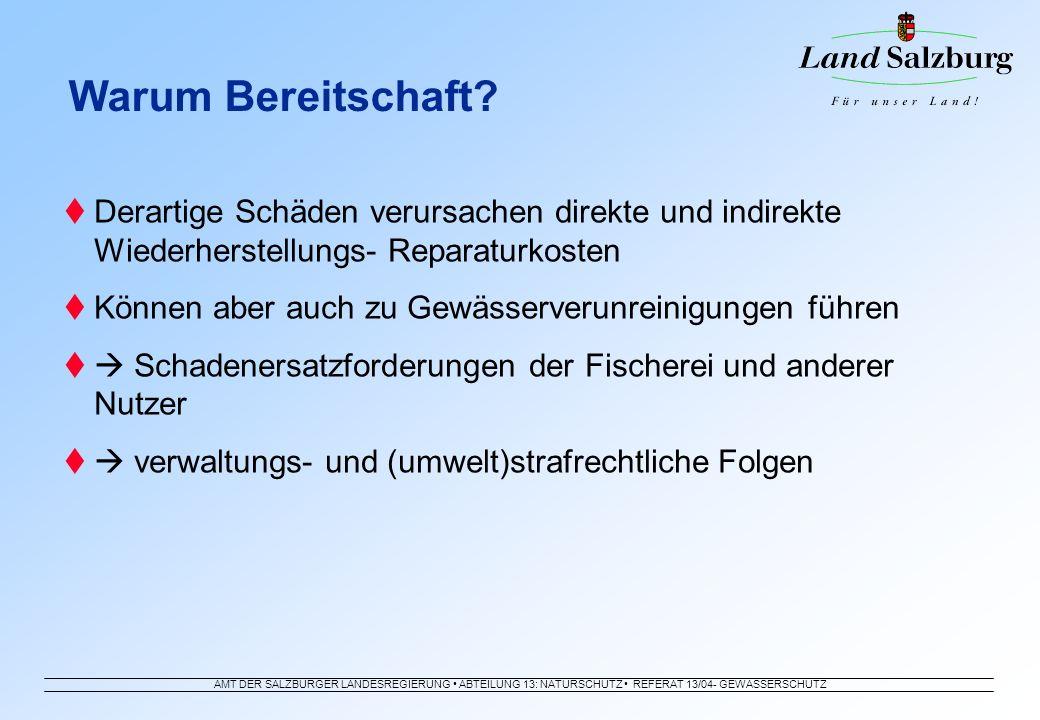 AMT DER SALZBURGER LANDESREGIERUNG ABTEILUNG 13: NATURSCHUTZ REFERAT 13/04- GEWÄSSERSCHUTZ Derartige Schäden verursachen direkte und indirekte Wiederh