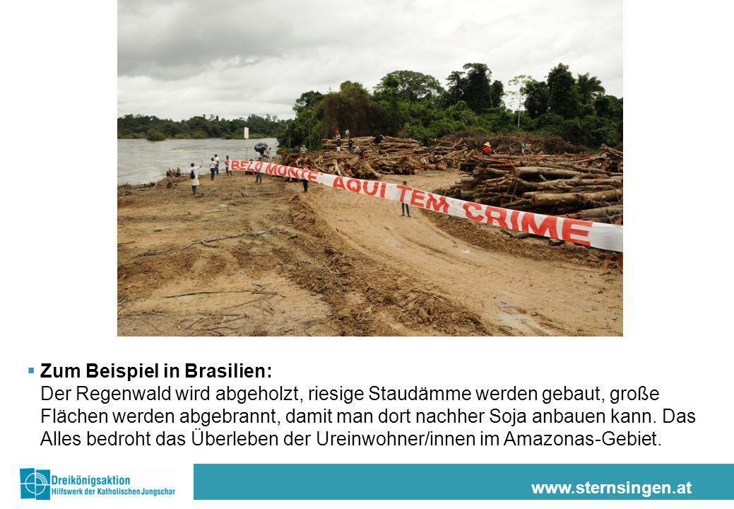 www.sternsingen.at Zum Beispiel in Brasilien: Der Regenwald wird abgeholzt, riesige Staudämme werden gebaut, große Flächen werden abgebrannt, damit man dort nachher Soja anbauen kann.