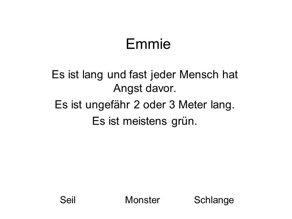Emmie Es ist lang und fast jeder Mensch hat Angst davor. Es ist ungefähr 2 oder 3 Meter lang. Es ist meistens grün. SeilMonsterSchlange