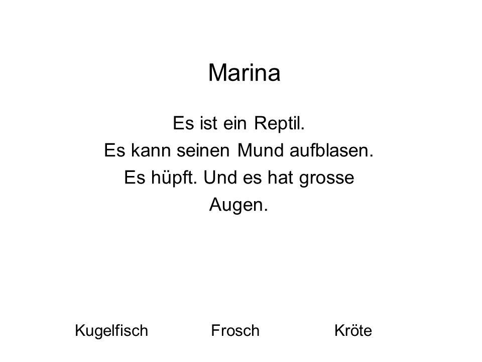 Marina Es ist ein Reptil. Es kann seinen Mund aufblasen. Es hüpft. Und es hat grosse Augen. KugelfischFroschKröte