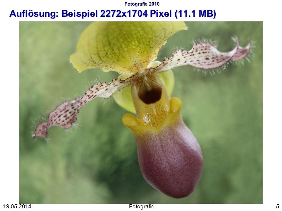 Fotografie 2010 Auflösung: Beispiel 2272x1704 Pixel (11.1 MB) Fotografie519.05.2014