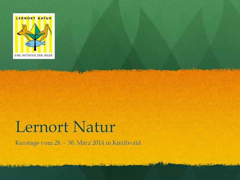 Lernort Natur Kurstage vom 28. – 30. März 2014 in Knüllwald