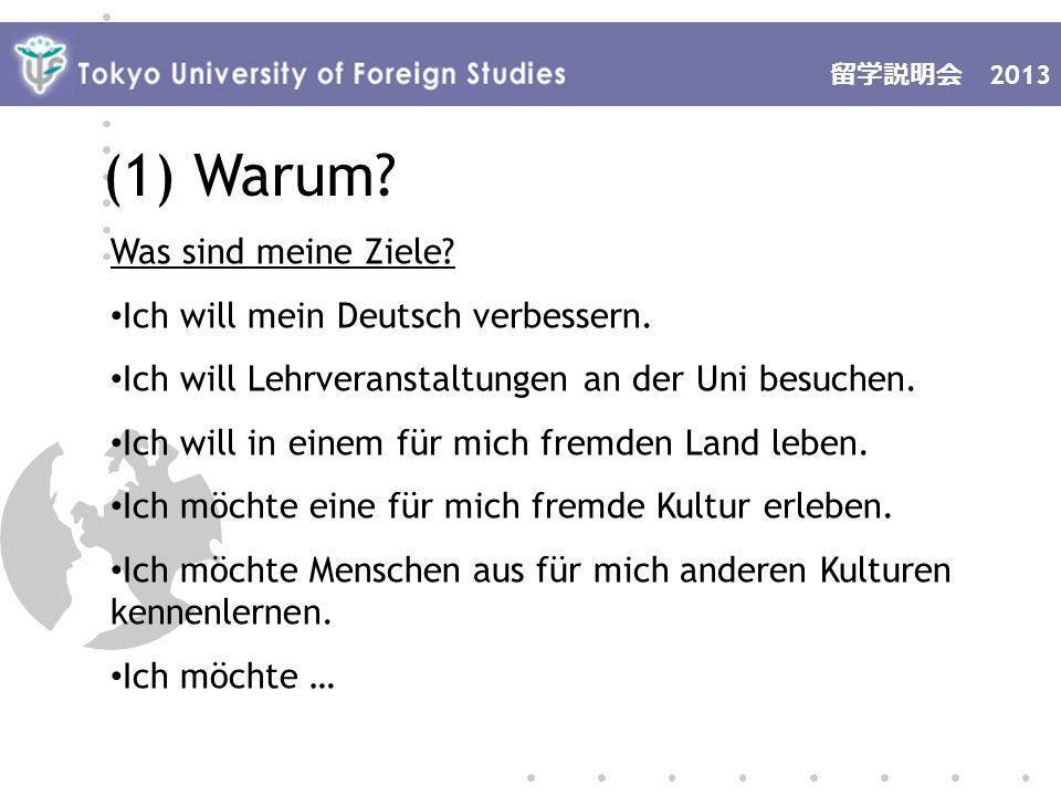 2013 (1) Warum. Was sind meine Ziele. Ich will mein Deutsch verbessern.