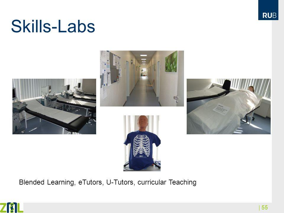 | 55 Skills-Labs Blended Learning, eTutors, U-Tutors, curricular Teaching