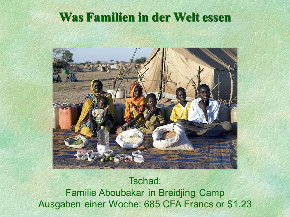 Was Familien in der Welt essen Tschad: Familie Aboubakar in Breidjing Camp Ausgaben einer Woche: 685 CFA Francs or $1.23