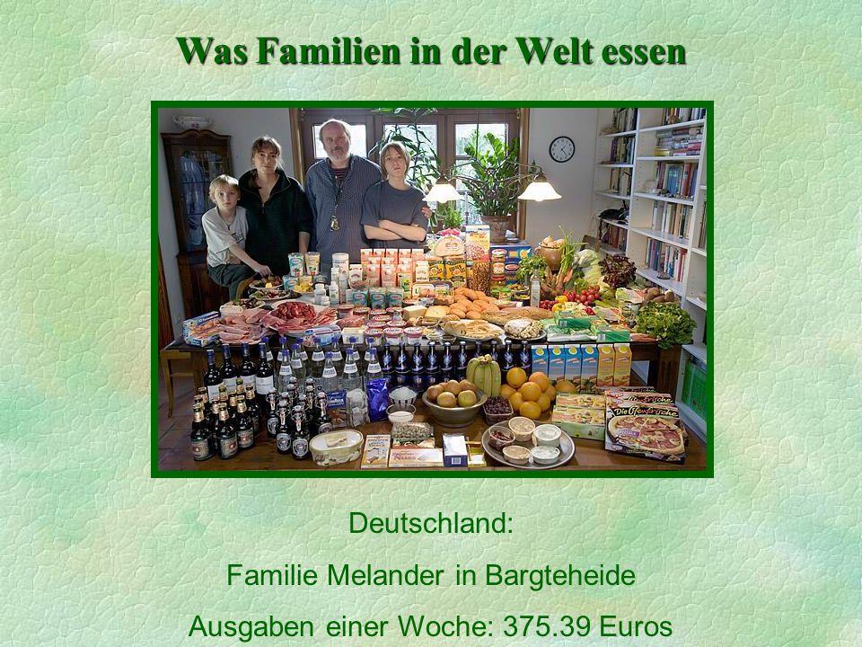 Was Familien in der Welt essen Deutschland: Familie Melander in Bargteheide Ausgaben einer Woche: 375.39 Euros