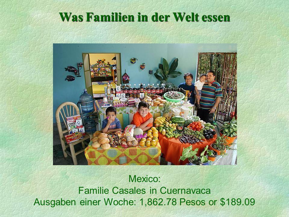 Was Familien in der Welt essen Mexico: Familie Casales in Cuernavaca Ausgaben einer Woche: 1,862.78 Pesos or $189.09