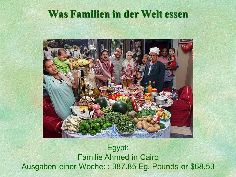 Was Familien in der Welt essen Egypt: Familie Ahmed in Cairo Ausgaben einer Woche: : 387.85 Eg. Pounds or $68.53