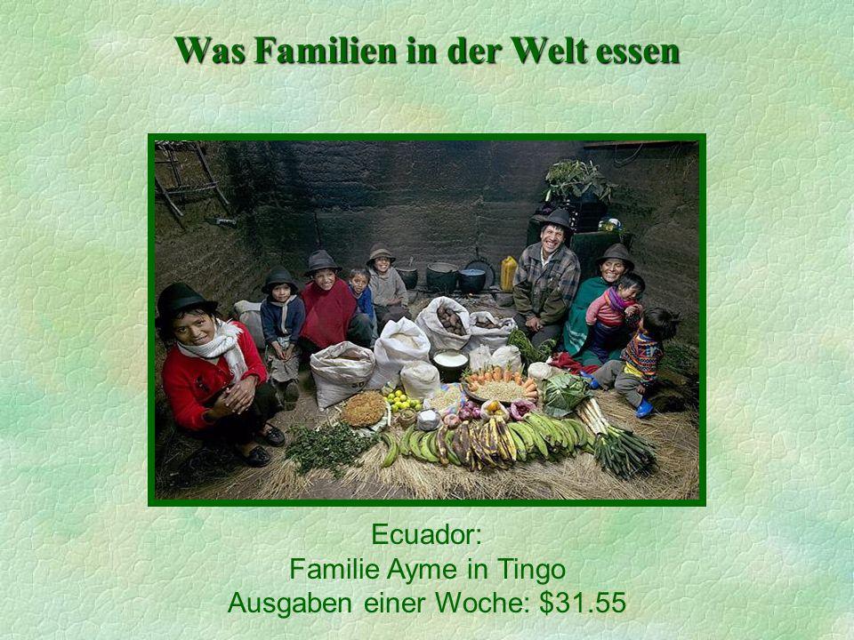 Was Familien in der Welt essen Ecuador: Familie Ayme in Tingo Ausgaben einer Woche: $31.55
