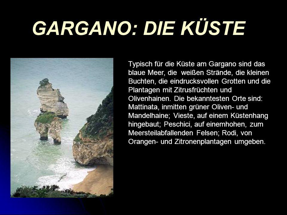 GARGANO: DIE KÜSTE Typisch für die Küste am Gargano sind das blaue Meer, die weißen Strände, die kleinen Buchten, die eindrucksvollen Grotten und die Plantagen mit Zitrusfrüchten und Olivenhainen.
