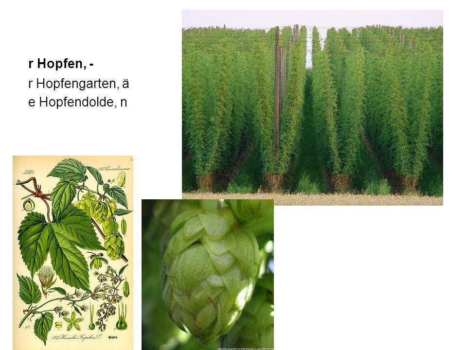 r Malz, 0 slad s Getreide, - r Gerste, n ječmen r Weizen, - pšenice r Roggen, - žito keimen – r Keim, n e Hefe, n/ e Bierhefe, n / (r Germ, 0)