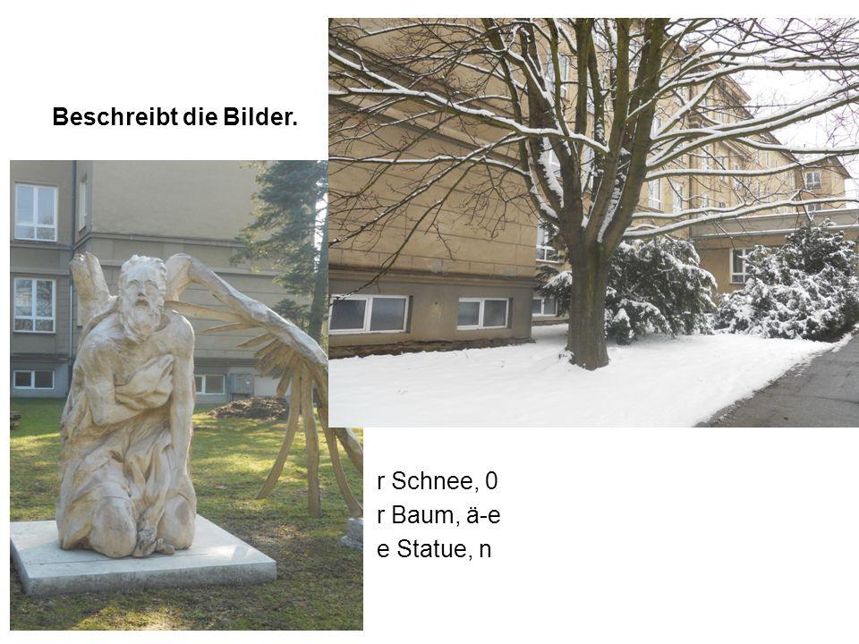 Beschreibt die Bilder. r Schnee, 0 r Baum, ä-e e Statue, n