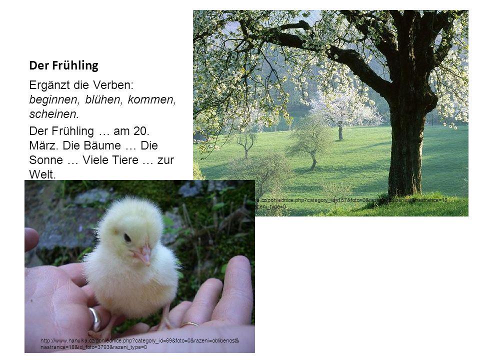 Der Frühling Ergänzt die Verben: beginnen, blühen, kommen, scheinen. Der Frühling … am 20. März. Die Bäume … Die Sonne … Viele Tiere … zur Welt. http: