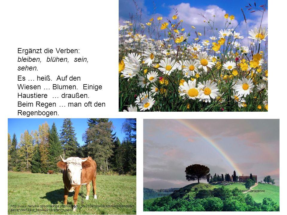 Ergänzt die Verben: bleiben, blühen, sein, sehen. Es … heiß. Auf den Wiesen … Blumen. Einige Haustiere … draußen. Beim Regen … man oft den Regenbogen.