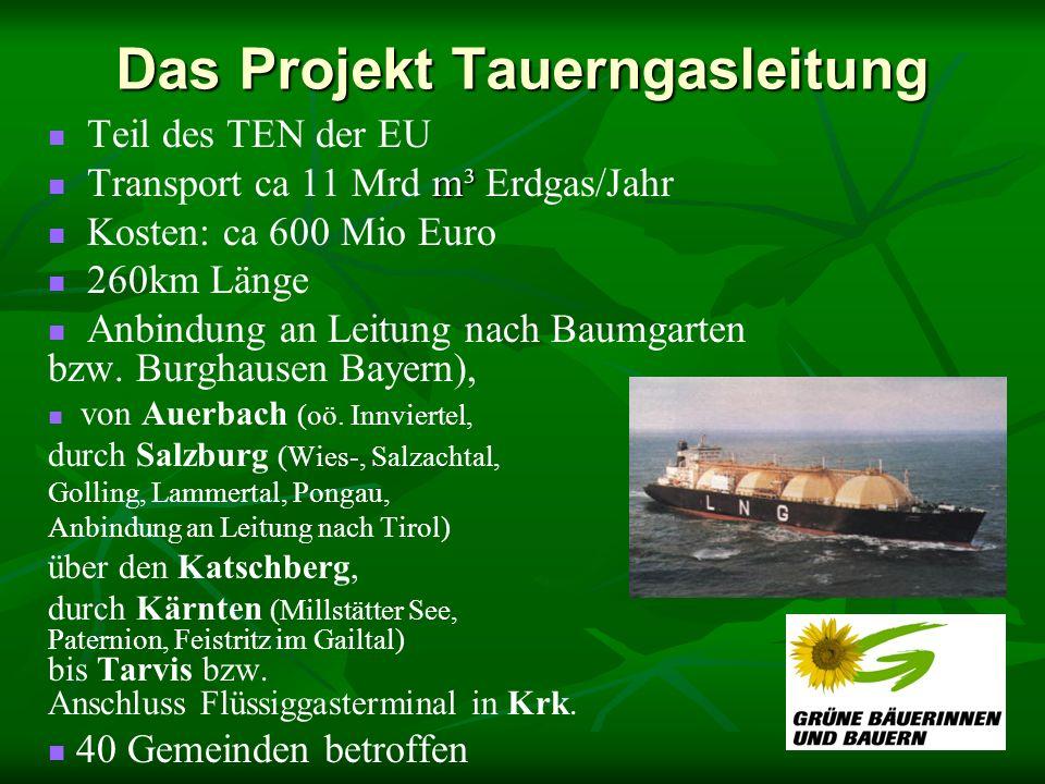 Das Projekt Tauerngasleitung Teil des TEN der EU m³ Transport ca 11 Mrd m³ Erdgas/Jahr Kosten: ca 600 Mio Euro 260km Länge Anbindung an Leitung nach B