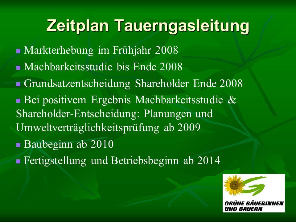 Zeitplan Tauerngasleitung Markterhebung im Frühjahr 2008 Machbarkeitsstudie bis Ende 2008 Grundsatzentscheidung Shareholder Ende 2008 Bei positivem Er