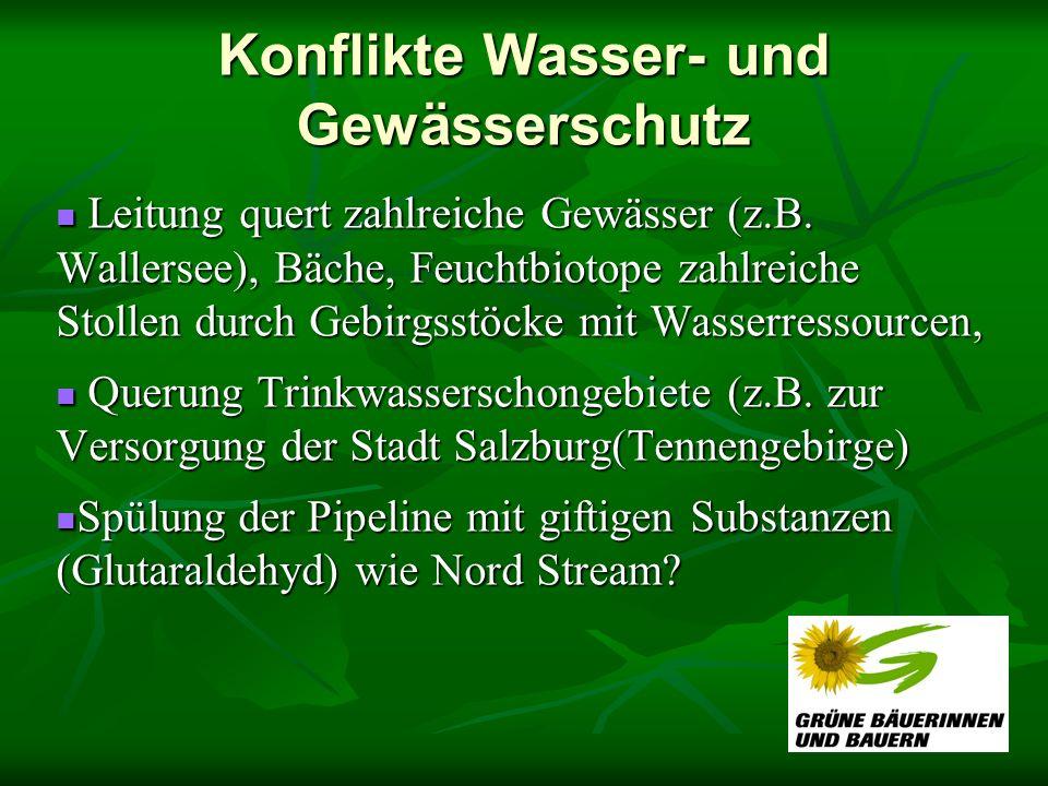 Konflikte Wasser- und Gewässerschutz Leitung quert zahlreiche Gewässer (z.B. Wallersee), Bäche, Feuchtbiotope zahlreiche Stollen durch Gebirgsstöcke m