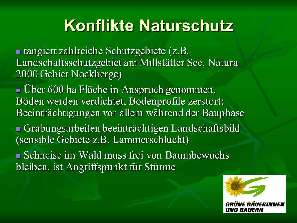Konflikte Naturschutz tangiert zahlreiche Schutzgebiete (z.B. Landschaftsschutzgebiet am Millstätter See, Natura 2000 Gebiet Nockberge) tangiert zahlr