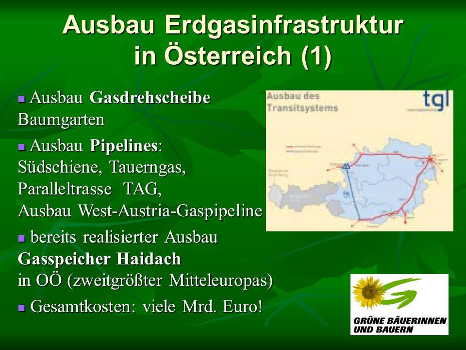 Ausbau Erdgasinfrastruktur in Österreich (1) Ausbau Gasdrehscheibe Baumgarten Ausbau Gasdrehscheibe Baumgarten Ausbau Pipelines: Südschiene, Tauerngas, Paralleltrasse TAG, Ausbau West-Austria-Gaspipeline Ausbau Pipelines: Südschiene, Tauerngas, Paralleltrasse TAG, Ausbau West-Austria-Gaspipeline bereits realisierter Ausbau Gasspeicher Haidach in OÖ (zweitgrößter Mitteleuropas) bereits realisierter Ausbau Gasspeicher Haidach in OÖ (zweitgrößter Mitteleuropas) Gesamtkosten: viele Mrd.
