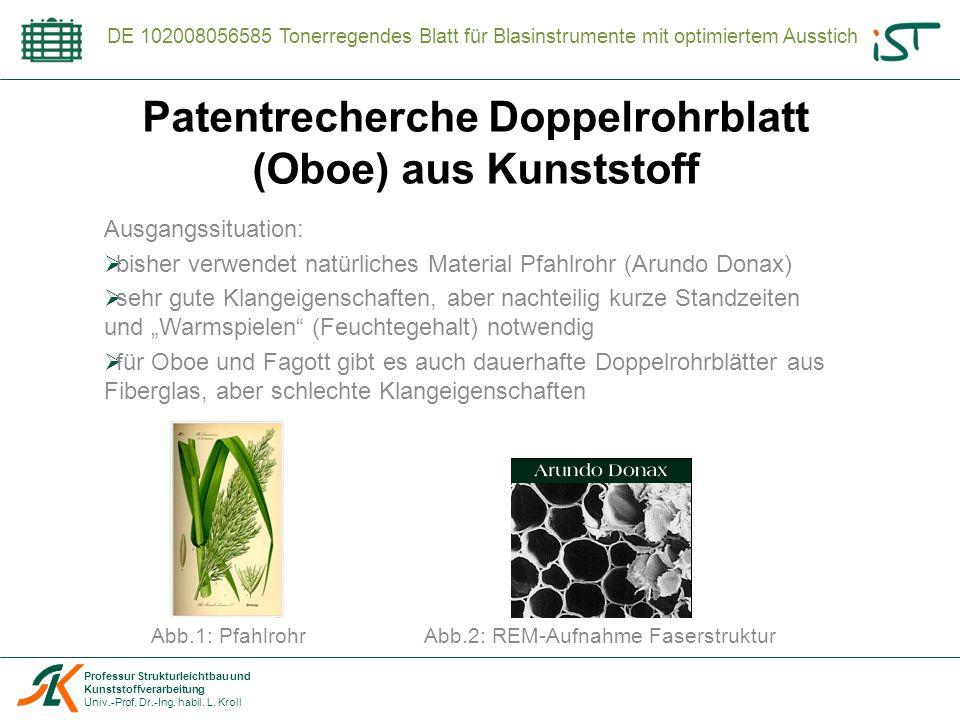 Professur Strukturleichtbau und Kunststoffverarbeitung Univ.-Prof. Dr.-Ing. habil. L. Kroll DE 102008056585 Tonerregendes Blatt für Blasinstrumente mi