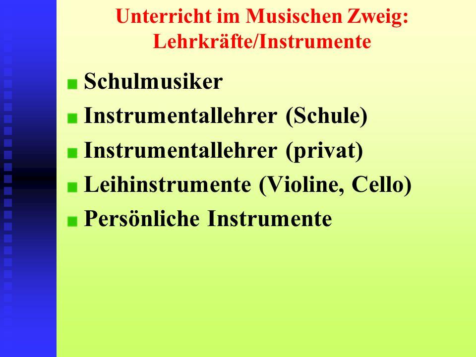 Unterricht im Musischen Zweig: Lehrkräfte/Instrumente Schulmusiker Instrumentallehrer (Schule) Instrumentallehrer (privat) Leihinstrumente (Violine, C