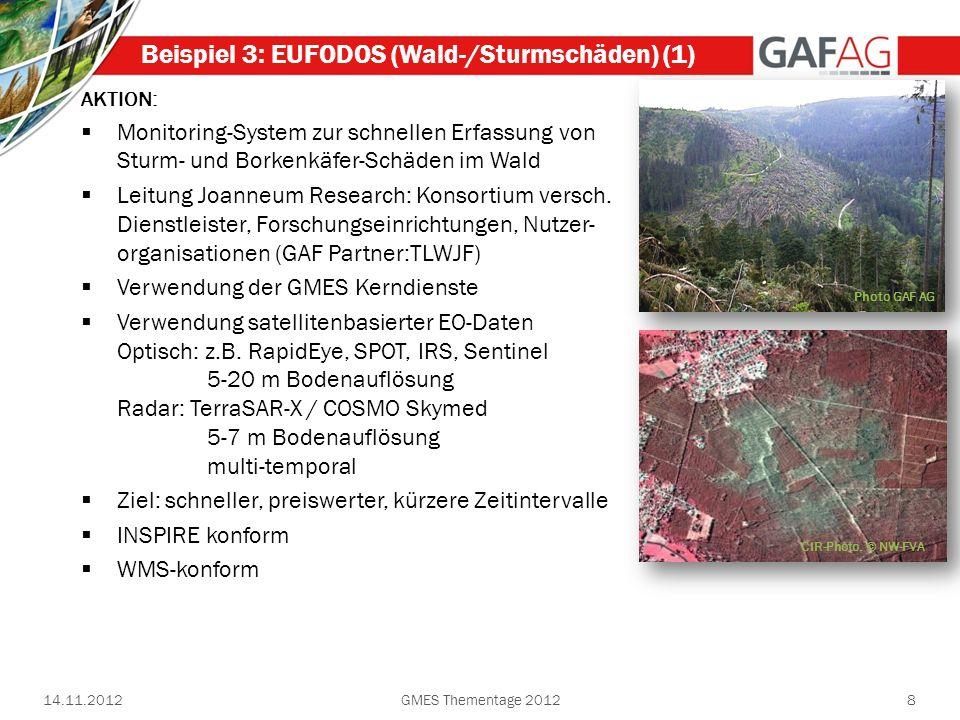 8 Beispiel 3: EUFODOS (Wald-/Sturmschäden) (1) AKTION: Monitoring-System zur schnellen Erfassung von Sturm- und Borkenkäfer-Schäden im Wald Leitung Jo