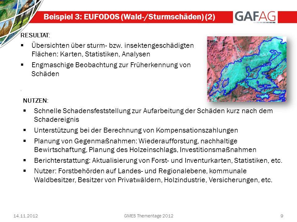 9 Beispiel 3: EUFODOS (Wald-/Sturmschäden) (2) RESULTAT: Übersichten über sturm- bzw. insektengeschädigten Flächen: Karten, Statistiken, Analysen Engm