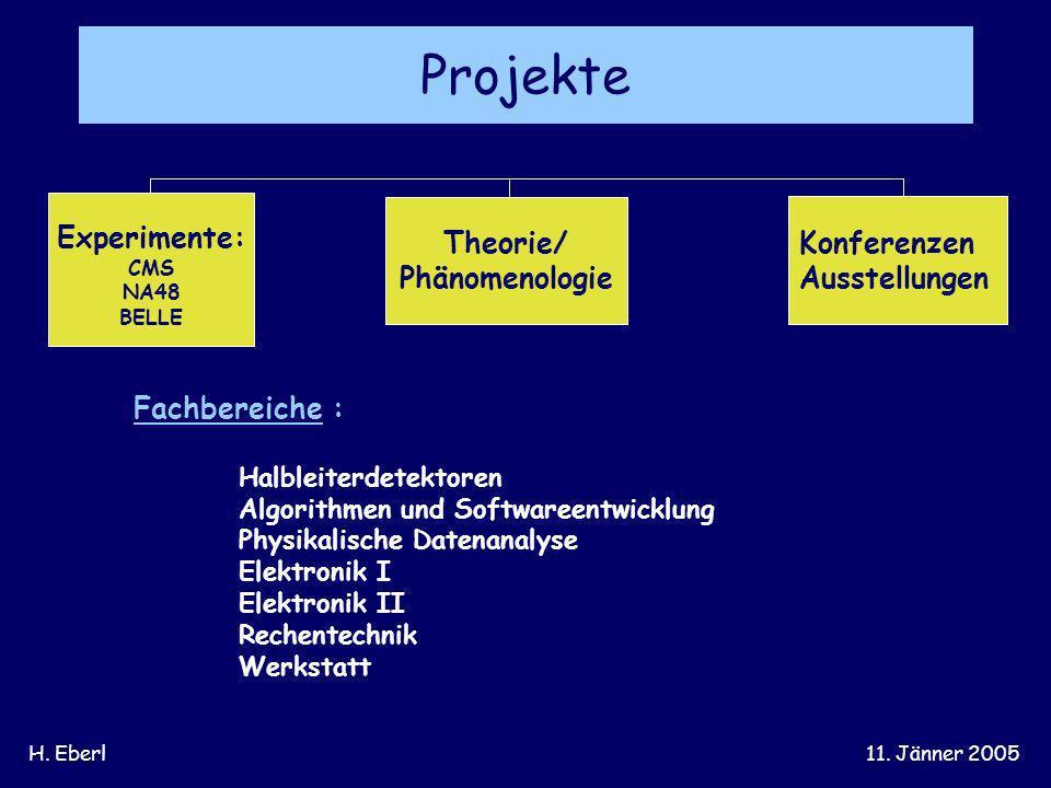 H. Eberl11. Jänner 2005 Fachbereiche : Halbleiterdetektoren Algorithmen und Softwareentwicklung Physikalische Datenanalyse Elektronik I Elektronik II
