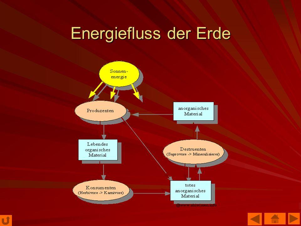 Energiefluss der Erde