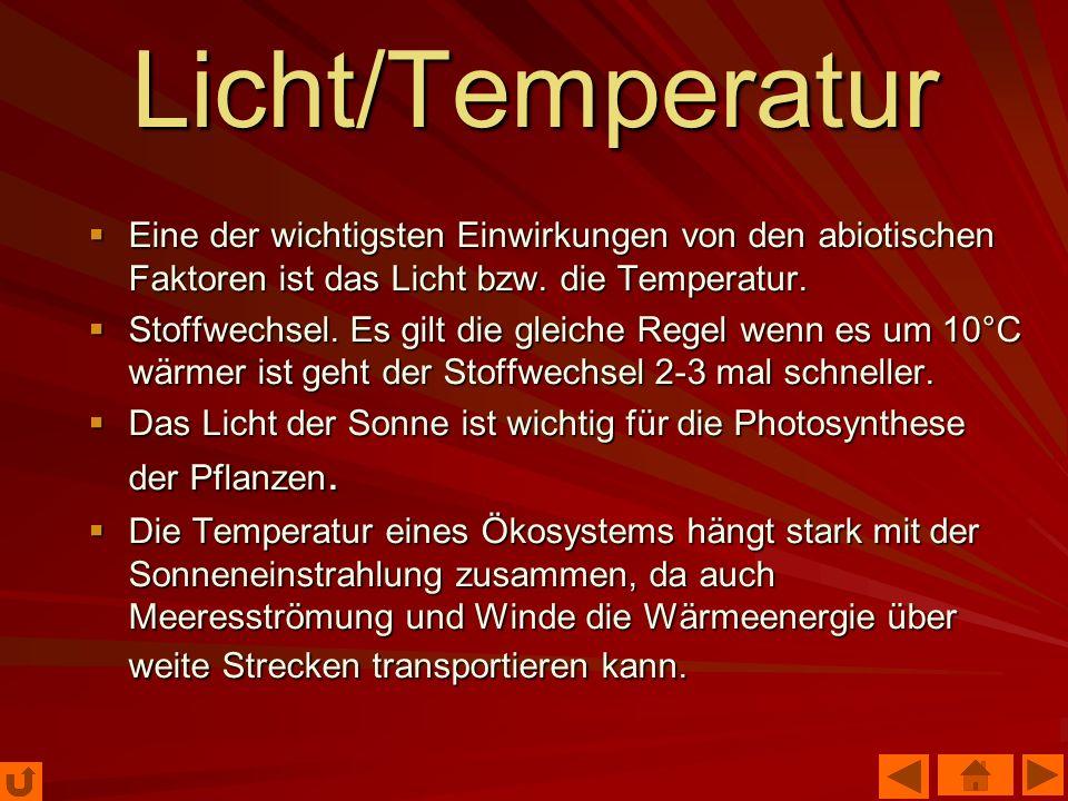 Licht/Temperatur Eine der wichtigsten Einwirkungen von den abiotischen Faktoren ist das Licht bzw. die Temperatur. Eine der wichtigsten Einwirkungen v