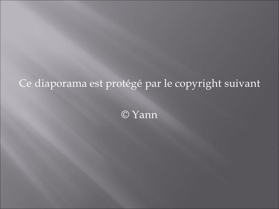 Ce diaporama est protégé par le copyright suivant © Yann