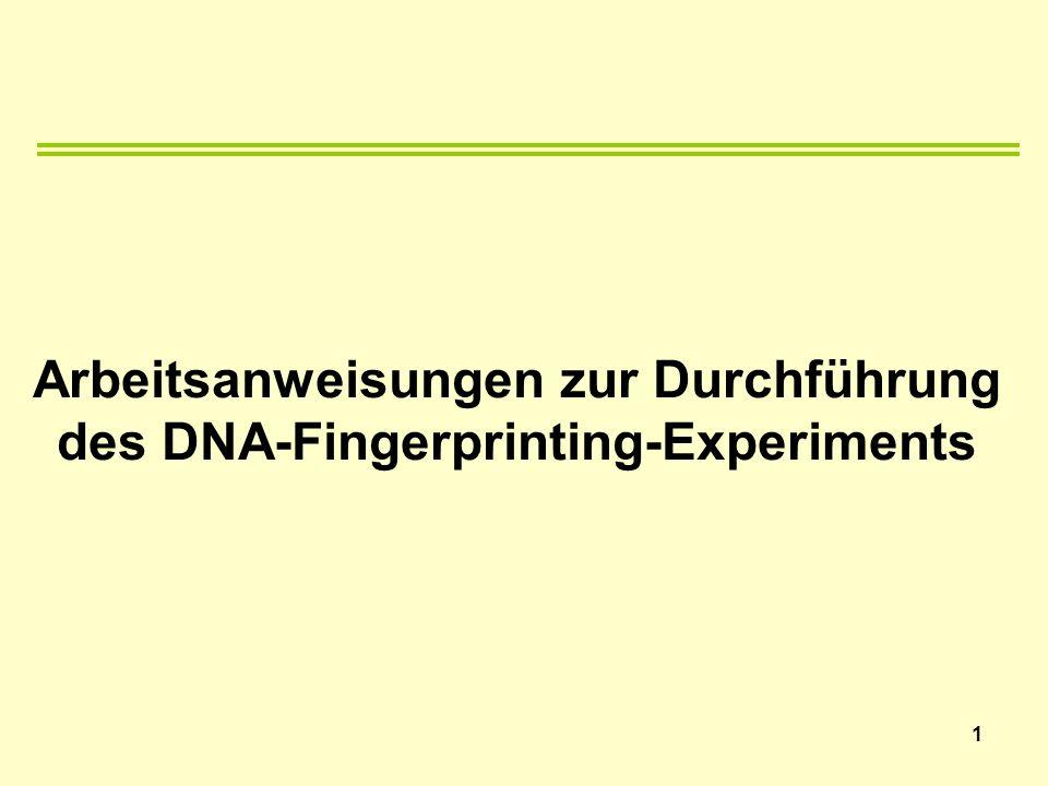 Arbeitsanweisungen zur Durchführung des DNA-Fingerprinting-Experiments 1
